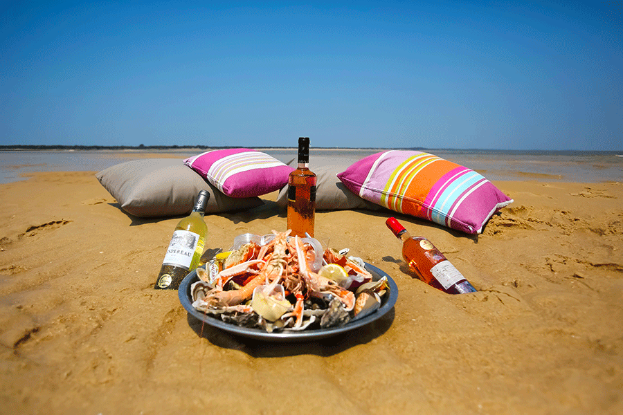 pique nique sur banc de sable pinasse