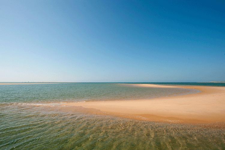 bassin arcachon et marée