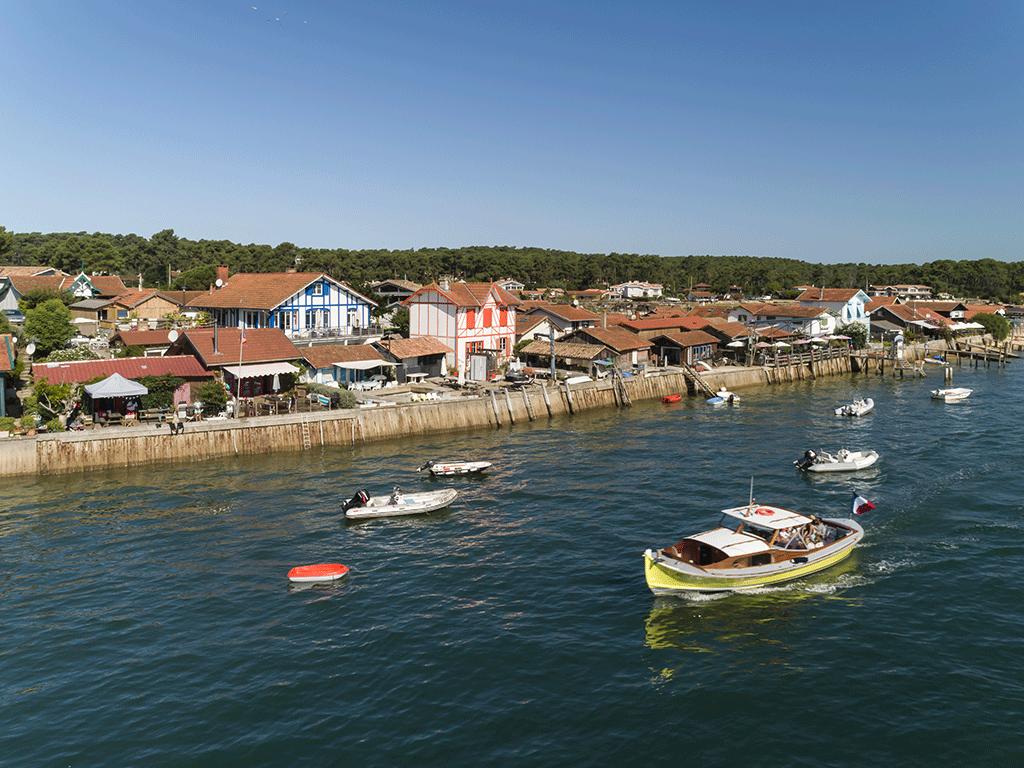Croisière île aux oiseaux et entrée du Bassin (3h)